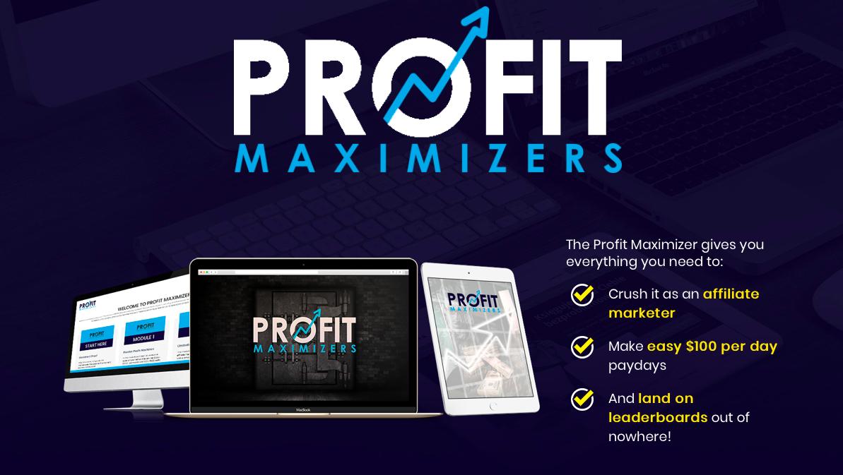 profit maximisers